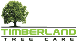 Timberland Tree Care Logo